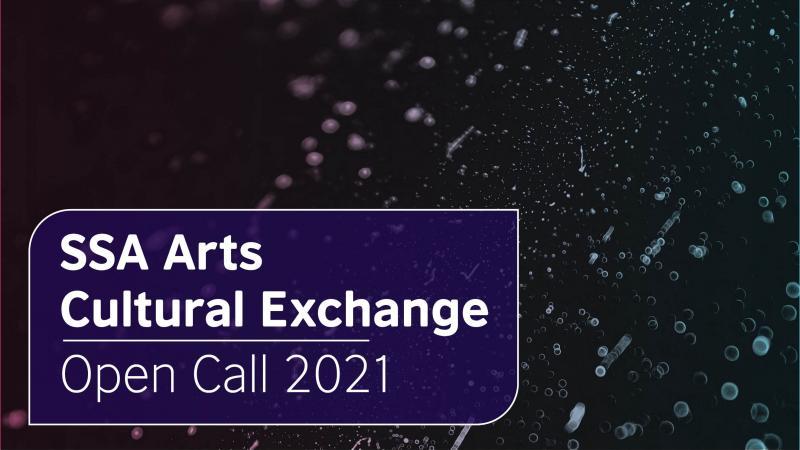 Cultural Exchange Ssa Solas 0